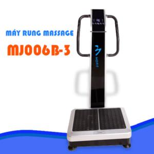 Máy rung toàn thân MJ006B-3